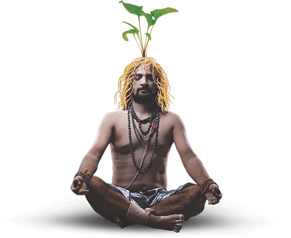 Sumitomo Naturedeep Monk